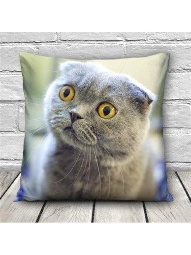 KISSEN DRUCK YELLOW EYE CAT